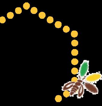Hexagone abeille titre